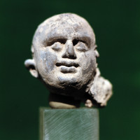 Male head with shaven hair - TS 1403