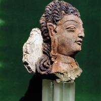 Head of a bodhisattva with long curly hair, from Chapel 37 - TS 1259