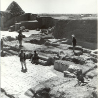 North-west area, 1961 ©Italian Archaeological Mission in Afghanistan