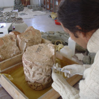 D. Marletto at the Kabul National Museum, 2005 ©IsIAO archives Ghazni/Tapa Sardar Project 2014