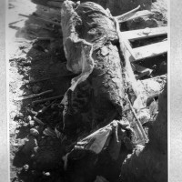1960 - Fragments of a leg of a huge standing Buddha image (L 844-28)